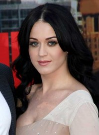 file_3618_katy-perry-curly-black-275