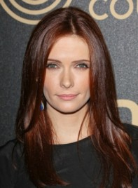 file_3704_bitsie-tulloch-long-straight-chic-layered-hairstyle-275