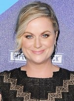 file_5843_Amy-Poehler-Medium-Blonde-Formal-Updo-Hairstyle.