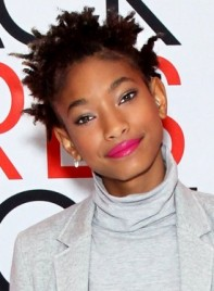 file_5903_Willow-Smith-Short-Black-Edgy-Hairstyle-Braids-Twists_-275