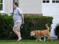 file_24_8401_celebs-who-look-like-their-dogs-chris-noth-04