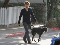 file_4_8401_celebs-who-look-like-their-dogs-orlando-bloom-03