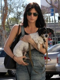 file_6_8401_celebs-who-look-like-their-dogs-selma-blair-05