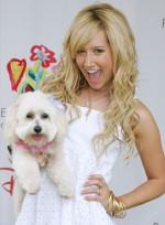 Celebs Who Look Like Their Dogs