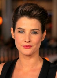 file_59794_colbie-smulders-brunette-edgy-chic-updo-hairstyle-275