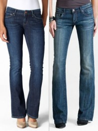 file_6_10131_best-jeans-under-100-bootcut