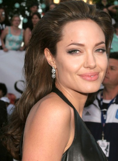 Angelina Jolie Long, Brunette Hairstyle
