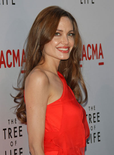 Angelina Jolie Long, Curly Hairstyle