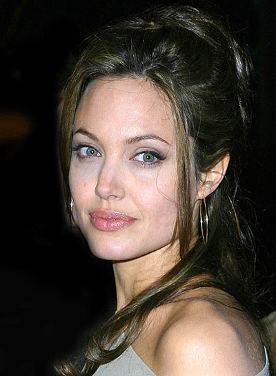 Angelina Jolie Long Half Updo