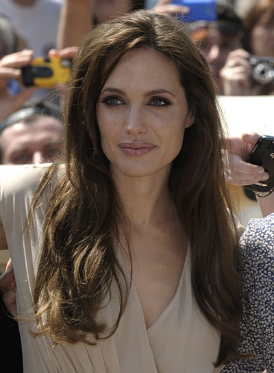 Angelina Jolie Long, Layered, Brunette Hairstyle