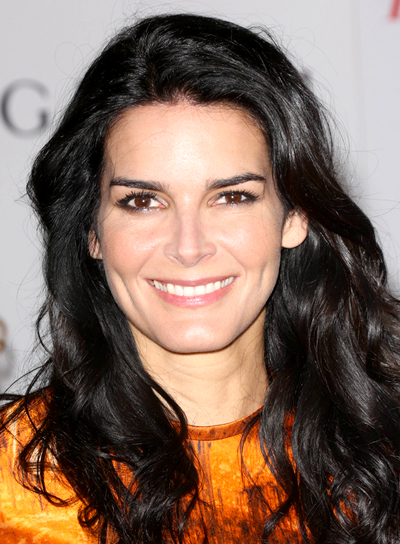 Angie Harmon's Long, Wavy, Black, Romantic Hairstyle