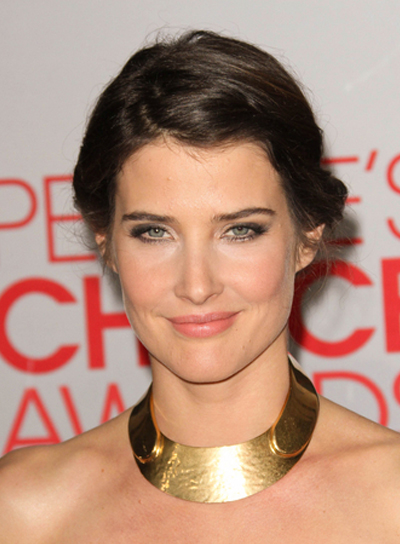 Cobie Smulders Sophisticated, Romantic, Brunette, Prom Updo