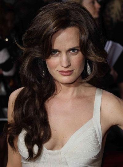 Elizabeth Reaser Long, Wavy, Brunette Hairstyle