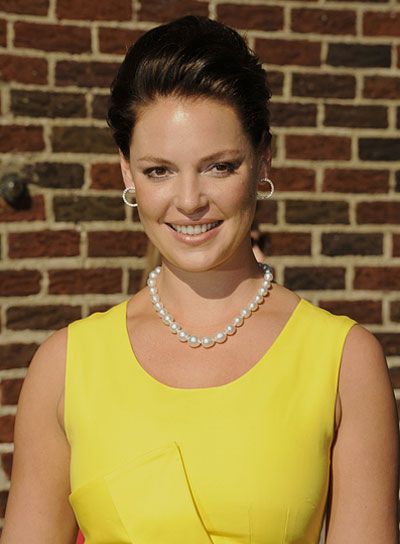 Katherine Heigl Sophisticated Brunette Updo