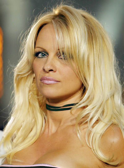 Pamela Anderson Long, Sexy Blonde Hairstyle
