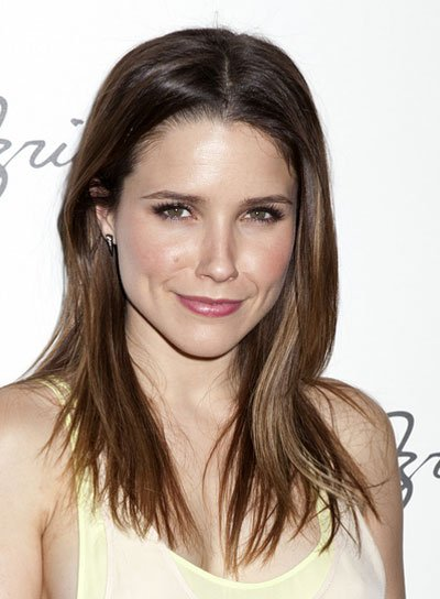 Sophia Bush Medium, Straight, Layered, Brunette Hairstyle