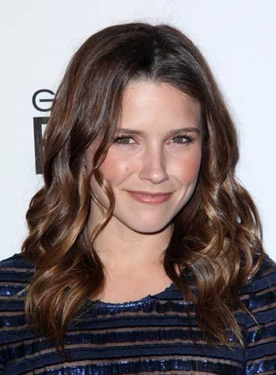 Sophia Bush Medium, Wavy, Romantic, Prom, Brunette Hairstyle