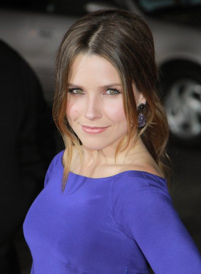 Sophia Bush Chic, Brunette Ponytail